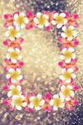 Plumeria Frame on Bokeh Background Stock Illustration