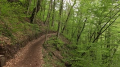 Nice ground trail run along hillside, fresh green leafy trees grow around Stock Footage
