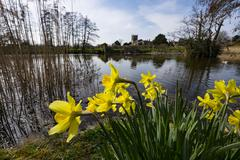 gardens of stately home - stock photo