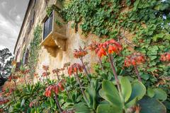 Old Majorca traditional house with flowers Stock Photos