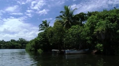 View to the tropical forest at Madu Ganga river bank from the tourist boat. Stock Footage