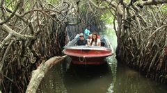 People enjoy boat trip by mangrove forest at the Madu Ganga river, Sri Lanka. Stock Footage