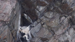 Gyre falcon calls to mate while resting on nest in cliff Stock Footage