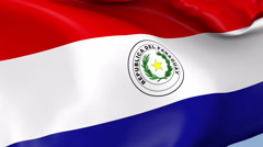 Paraguay Waving Flag Background Loop Stock Footage