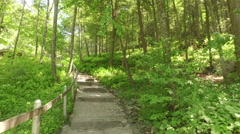Nature trail with stairs in the woods - stock footage