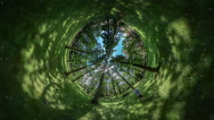360Vr Video Man is Walking by Forest Park Green Fresh Grass and Trees Bench - stock footage