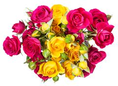 Bunch of pink and yellow rose spray flowers Stock Photos