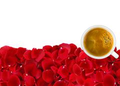 Beautiful red rose petals and white coffee cup isolated on white background Stock Photos