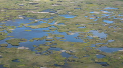 Swamp, close up on an inactive volcano Stock Footage