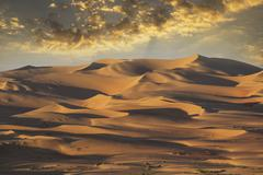 Sand dunes in remote desert Kuvituskuvat