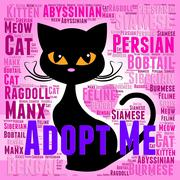 Adopt Cat Representing Guardian Pets And Adopted Stock Illustration