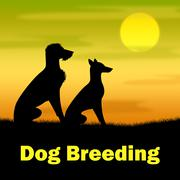 Dog Breeding Representing Offspring Canine And Night - stock illustration