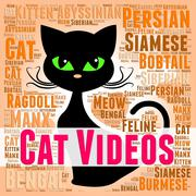 Cat Videos Indicating Cats Kitty And Movies - stock illustration
