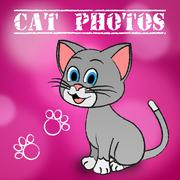 Cat Photos Meaning Cameras Pictures And Snapshots - stock illustration