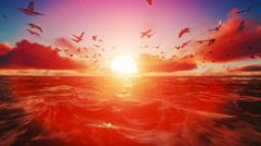 Seagull flying over the sea at sunset Stock Footage