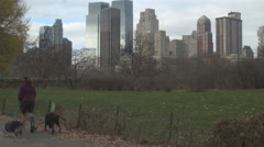 Female Walking Dogs in Central Park, New York City Stock Footage