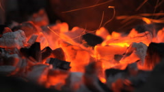 Burning Wooden Barbecue Stock Footage