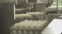 Automatic loading of eggs on conveyor by means of suction cups Stock Footage