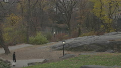 Man Walking Through Central Park, NYC Stock Footage
