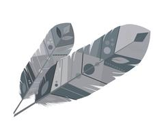 Feather design. isolated  bohemic plume, vector graphic Stock Illustration
