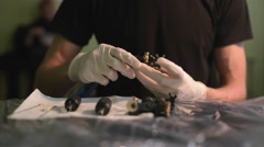 Tattoo machine. tattoo artist tattoo machine prepares to work. sterile and tidy. - stock footage