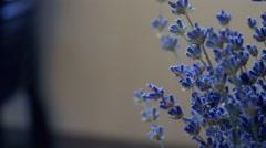 Close up truck shot of lavender sheaf. Lavender indoors. Stock Footage