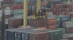 Cran Fragment With Container Stock Footage