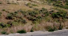 Tilt up to wind turbines on rural hillside setting in Mojave Desert 4K Stock Footage