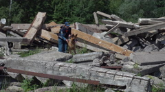 Rescue Dogs With Dog Handlers Search To Rescue Earthquake Victims at training Stock Footage