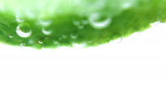 Sliced lime in a glass Stock Footage