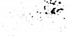 Ink splat on white background Stock Footage