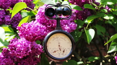 The Anemometer On The Background Of Blooming Lilacs - stock footage