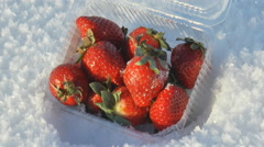 Plastic box of strawberries lying in the snow. Stock Footage