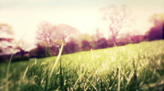 Retro Grunge Spring Meadow In The British Countryside Stock Footage