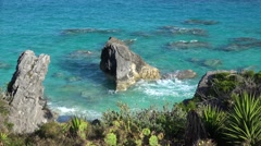 Sharp rocks at the shore of South Shore National Park. Bermuda Stock Footage