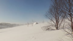 Snow covered hillside with small trees, the wind blows with a snowstorm. Stock Footage