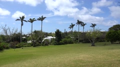 Types of Hamilton Botanical Gardens, Bermuda Stock Footage