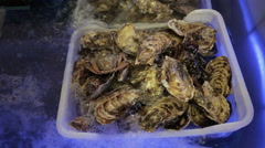 Oysters with crab in the aquarium - stock footage
