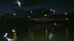 Mayflies flying in slow motion over the river, filming from boat Stock Footage