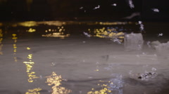 Mayflies flying in slow motion over the river Stock Footage