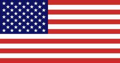 3D American Flag 3D Model