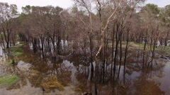 Forest fires by aerial photography Stock Footage