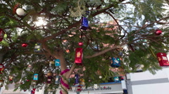 Christmas gifts hang on the branches of tree of Santa Cruz de Tenerife Stock Footage