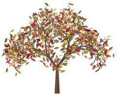 Tree with Autumn Leafage Stock Illustration
