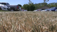 Dry brown grass in Ontario drought and heatwave - stock footage