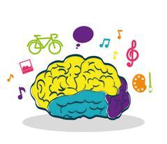 Human organ. Brain and creative  icon. vector graphic Stock Illustration