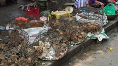 HOI AN, VIETNAM: Local market in Vietnam Stock Footage