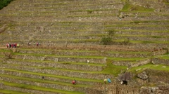 Inca terraces in Machu Picchu in Peru. Stock Footage