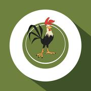 Animal design. rooster icon. Isolated illustration, white backgr - stock illustration