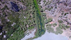 Aerial of the palm forest river in the mountains - stock footage
